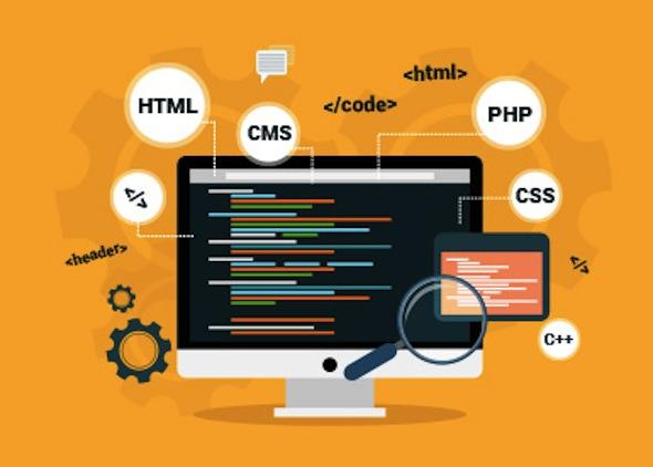 web design Buea Cameroon